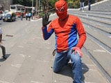 Video : Will this Spiderman make it to Parliament