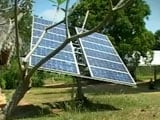 Video : Can Farming Become Energy Smart?
