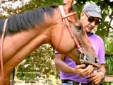 Video: Heavy Petting With Milan Luthria