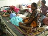 Video : Government Measures to Fight Encephalitis in North Bengal Inadequate, Delayed