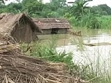 Video : Flood Fury in North India: Dozens Killed, Lakhs Affected