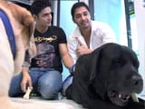 Video: 'Iqbal' Movie-star Shreyas Talpade and His Pet Stories