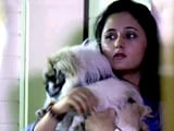 Video: The Television Star Rashami Desai and Her Animal World