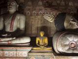Video: Luxurious Decoratives: Colombo, Sri Lanka