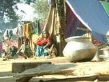 Video : Month After Assam Violence, Fear Keeps Tribals and Bodos From Returning Home