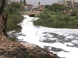Video: Bengaluru's Foaming, Frothing Lake: Can it be Saved?