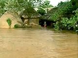 Video : बाढ़ से बेहाल ओडिशा, 5 लाख लोगों पर पड़ा असर