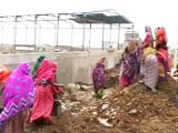 Video : Massive Protests After Illegal Chemical Waste Dumped in Madhya Pradesh Villages