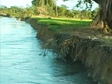 Video : Gone in the Assam Floods: 8,000 Hectares of Fertile Land Every Year