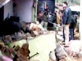 Video : तृणमूल नेता के घर धमाका, दो की मौत