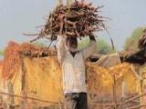 Video: कल्टीवेटिंग होप : किसानों की मानसिक दशा पर एक नज़र