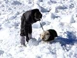 Video: इंडिया 7 बजे : सियाचिन में बर्फ की मोटी चादर में छह दिन तक दबा रहा जवान कोमा में