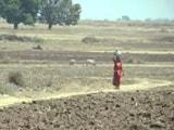 Video : मध्य प्रदेश : पानी नहीं तो शादी नहीं