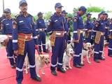 Video : तैयार है दिल्ली पुलिस का स्पेशल डॉग स्क्वॉड