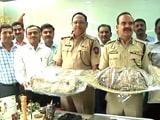 Video : ठाणे में अंतरराष्ट्रीय ड्रग्स रैकेट का भंडाफोड़, 2 हजार करोड़ रुपये का नशीला पाउडर जब्त