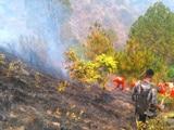 Video: उत्तराखंड : जंगलों में लगी आग पर पानी की बौछार के लिए एमआई-17 हेलीकॉप्टर तैनात
