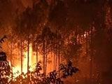 Video : प्राइम टाइम इंट्रो : उत्तराखंड की आग इतनी भयानक क्यों हुई?
