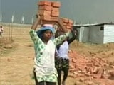 Video : Meera Carries Bricks On Her Head, Clears Class 10, Can't Take A Day Off