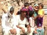 Video : मध्य प्रदेश : राख से परेशान खंडवा के किसान
