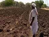 Video : Farmers Hope For Good Rain In Coming Months After Dry Spell in June