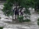 Video: मध्य प्रदेश में बारिश से आफत : पन्ना में ढहे करोड़ों के बांध