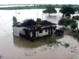 Video : बिहार की पुनपुन नदी में नाव पलटी, 9 लापता