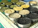 Video : As Pulse Prices Dip, Concern Grows Over Farmers' Earnings