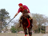 Video : India Adventures in Patiala: The Final Run Up to the Finale