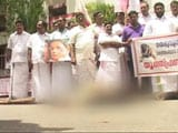 Video : Kerala Protesters Hammered Dogs To Death, Say Police, File Case Against 15