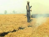 Video: 'Not Just Farm Fires, Many Causes Of Pollution'