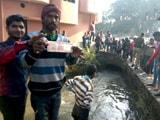 Video : हलद्वानी में नहर में मिले लाखों रुपये के 1,000-500 के पुराने नोट