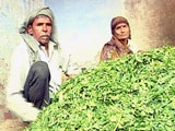 Video : किसानों पर नोटबंदी की मार