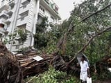 Video : Cyclone Vardah Gone, Battered Chennai Picks Up The Pieces
