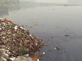 Video: Delhi Government's Action Plan To Clean Up The Yamuna