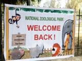 Video : वाह! खुल गया चिड़ियाघर