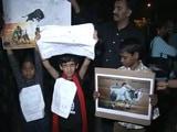 Video : तमिलनाडु के राज्यपाल विद्यासागर राव ने जल्लीकट्टू पर अध्यादेश को दी मंजूरी
