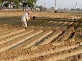 Video : प्राइम टाइम इंट्रो : किसानों के लिए आम बजट में क्या है ख़ास?