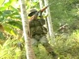 Jungle Warfare: The Hunt For Terrorists