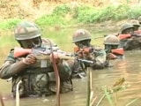 Video: Trained To Eat Snakes And Scorpions: Inside India's Jungle Warfare School