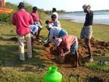 Video : Tamil Nadu Revives Ancient Community De-Silting Of Lakes, Tanks