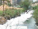 Video : Why Do Bengaluru's Foamy Lakes Need Foreign Help, Ask City Experts