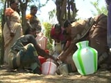 Video : In This Drought-Hit Tamil Nadu Village, Only Women Left In Search Of Water