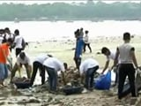 Video : Mumbai's 'Dirtiest' Beach Is Finally Clean. 5 Million Kg Filth Removed