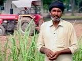 Video : पंजाब के किसान कंवल सिंह का दर्द