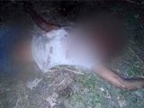 Video : 2 Beaten To Death In North Bengal On Suspicion Of Being Cow Thieves