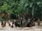 Video : Fresh Floods Hit Assam, Over 78,000 People Affected