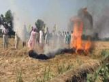 Video : चेतावनी के बावजूद किसानों ने जलाई खूंटी, सरकार के खिलाफ प्रदर्शन