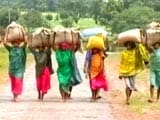 Video : Grim Reality Of Hunger In Jharkhand