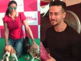 Video : Tiger Shroff & Gul Panag At Petathon 2017