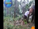 Video : Watch: Kerala Man's 'Baahubali' Stunt With Elephant Goes Horribly Wrong